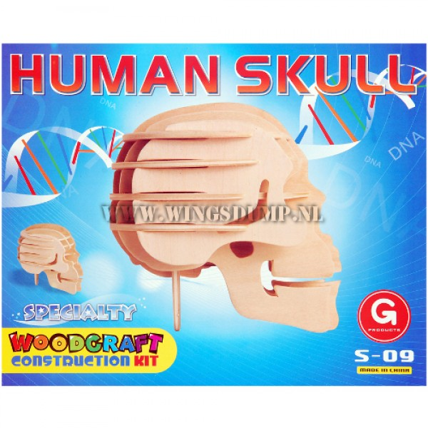 Houten bouwpakket Human Skull